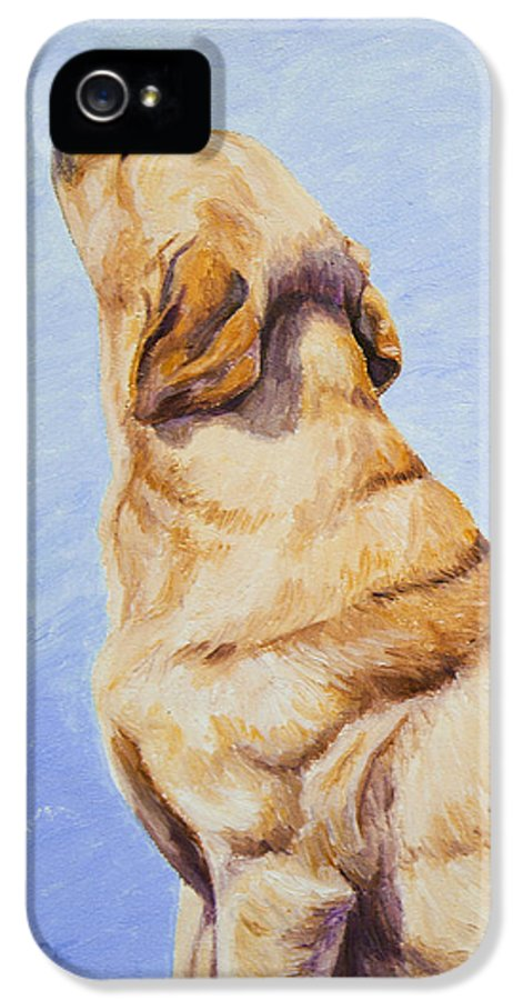 Dog IPhone 5 Case featuring the painting Brushing The Dog by Crista Forest