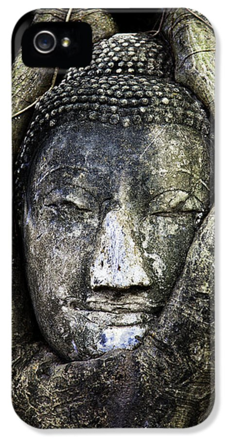 Ayutthaya IPhone 5 Case featuring the photograph Buddha Head In Banyan Tree by Adrian Evans