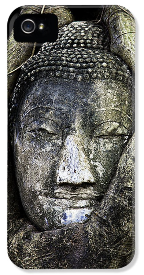 Ancient IPhone 5 / 5s Case featuring the photograph Buddha Head In Banyan Tree by Adrian Evans