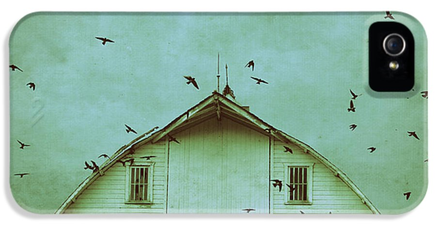 Barn IPhone 5 Case featuring the photograph Busy Barn by Julie Hamilton