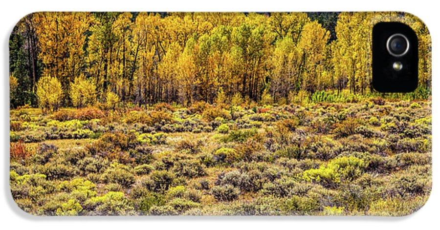 Cache La Poudre River Colors IPhone 5 Case featuring the photograph Cache La Poudre River Colors by Jon Burch Photography