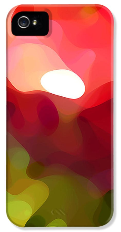Abstract Art IPhone 5 Case featuring the painting Cactus Resting by Amy Vangsgard