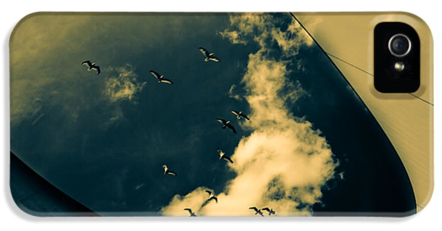 Abstract IPhone 5 Case featuring the photograph Canvas Seagulls by Bob Orsillo