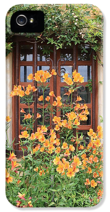 Alstroemeria IPhone 5 Case featuring the photograph Carmel Mission Window by Carol Groenen