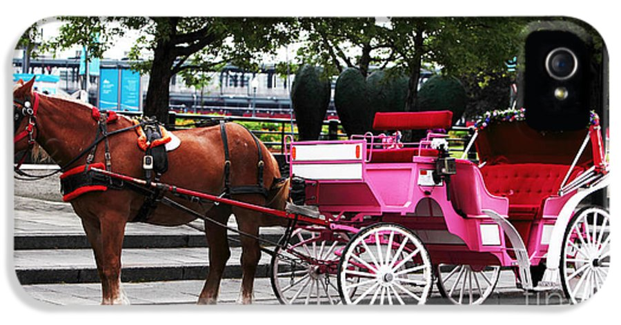 Carriage Ride In Montreal IPhone 5 Case featuring the photograph Carriage Ride In Montreal by John Rizzuto