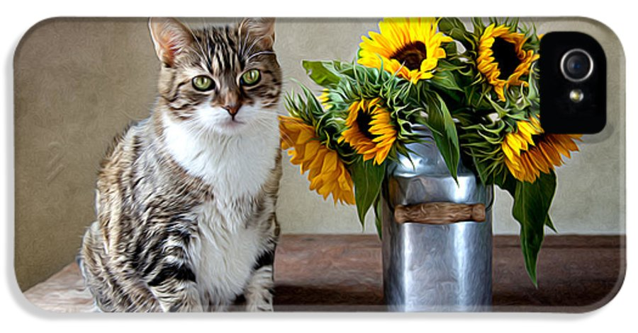 Cat IPhone 5 Case featuring the painting Cat And Sunflowers by Nailia Schwarz