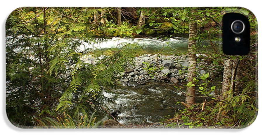 Mountain IPhone 5 Case featuring the photograph Clear Mountain Stream by Carol Groenen