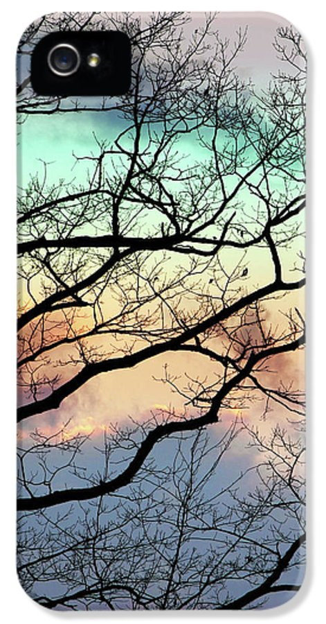 Abstract Tree IPhone 5 Case featuring the mixed media Cold Hearted Bliss by Christina Rollo