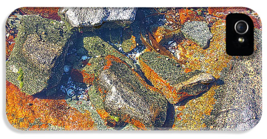 Decorative IPhone 5 Case featuring the photograph Colorful Earth History by Heiko Koehrer-Wagner