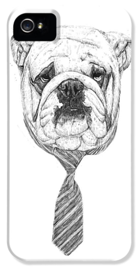 Dog IPhone 5 Case featuring the digital art Cooldog by Balazs Solti