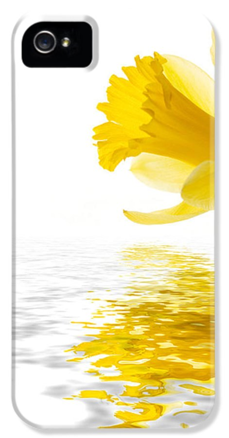 Background IPhone 5 Case featuring the photograph Daffodil Reflected by Jane Rix
