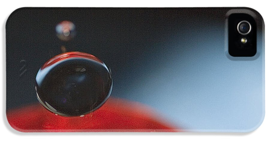 Macro IPhone 5 Case featuring the photograph Descending by Rebecca Cozart