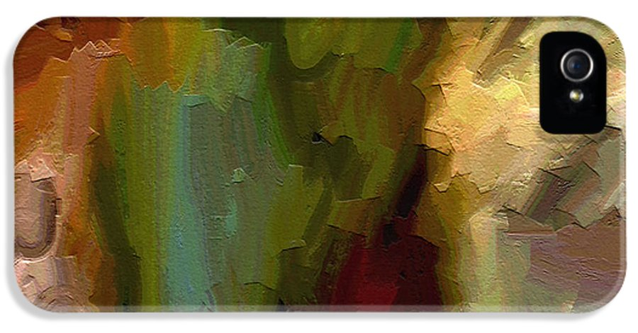 Abstract Art IPhone 5 Case featuring the painting Double Indemnity by Ely Arsha