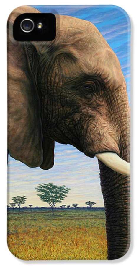 Elephant IPhone 5 Case featuring the painting Elephant On Safari by James W Johnson