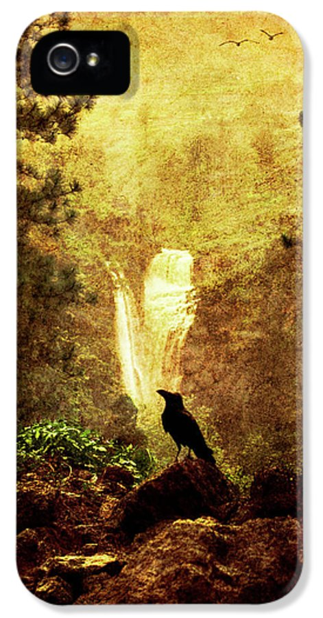 Crow IPhone 5 Case featuring the photograph Felt Mountain by Andrew Paranavitana