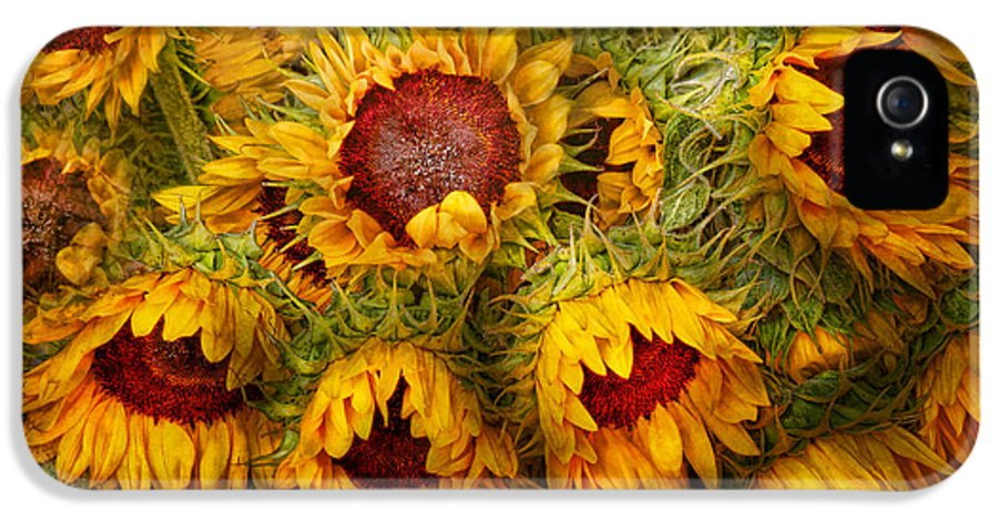 Sunflower IPhone 5 Case featuring the photograph Flowers - Sunflowers - You're My Only Sunshine by Mike Savad