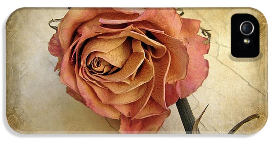 Flower IPhone 5 Case featuring the photograph For You by Jessica Jenney