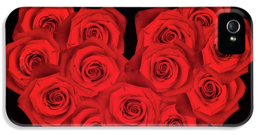 Fourteen IPhone 5 Case featuring the photograph Fourteen Roses by Wim Lanclus