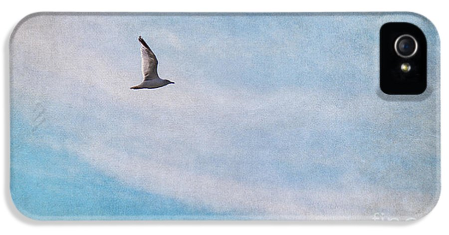 Gull IPhone 5 Case featuring the photograph Freedom by Angela Doelling AD DESIGN Photo and PhotoArt