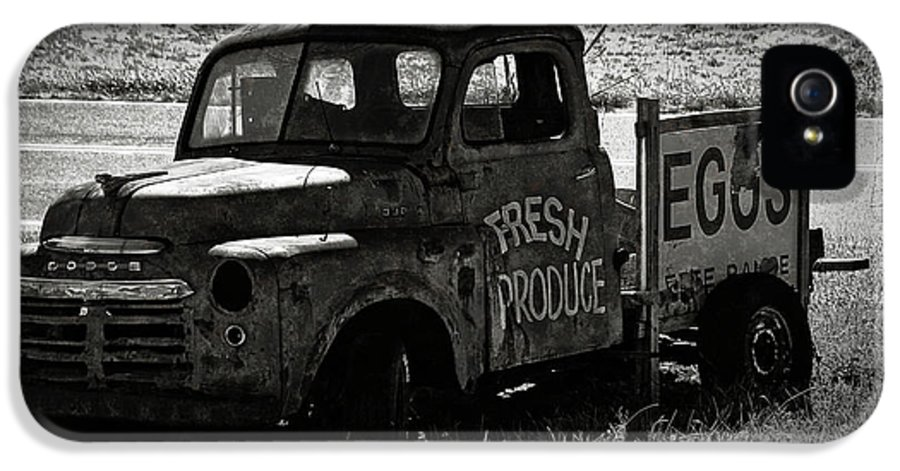 Fresh IPhone 5 Case featuring the photograph Fresh Produce Free Range Eggs by Teresa Mucha