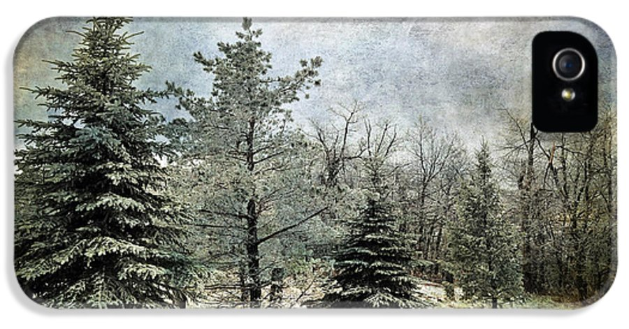 Snow IPhone 5 Case featuring the photograph Frosty by Lois Bryan