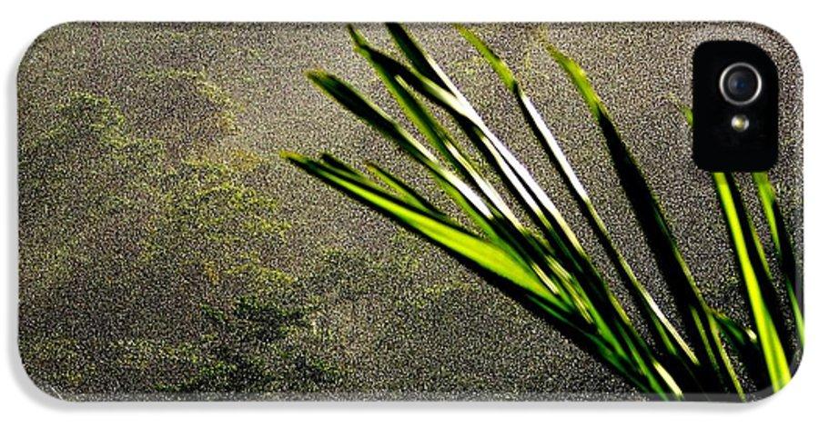 Rain IPhone 5 Case featuring the photograph Garden Of Eden Rain by Karen Wiles