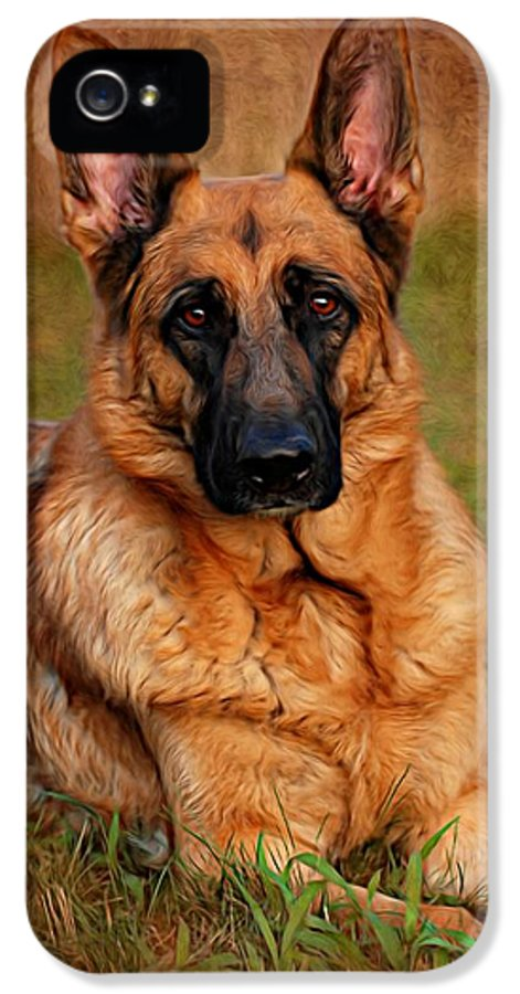 German Shepherd Dog IPhone 5 Case featuring the photograph German Shepherd Dog Portrait by Angie Tirado
