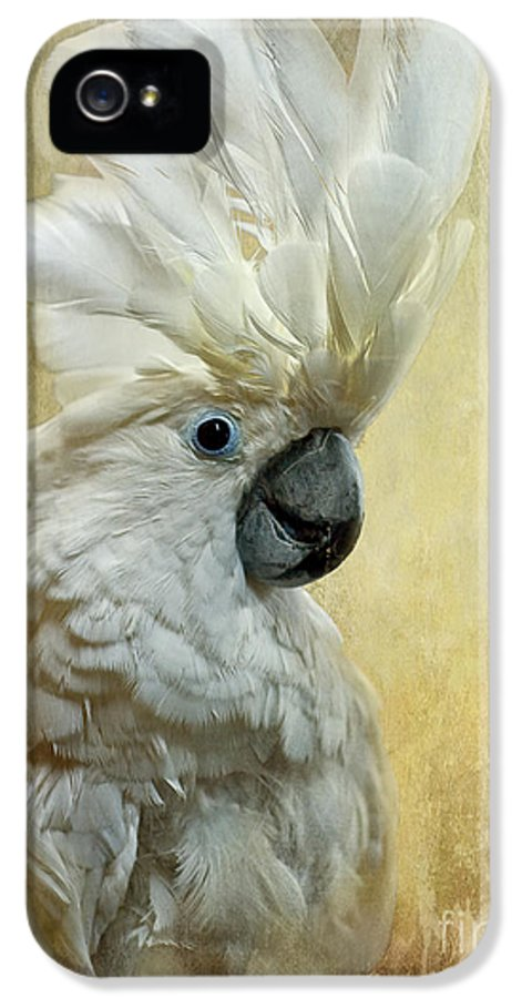 Cockatoo IPhone 5 Case featuring the photograph Glamour Girl by Lois Bryan