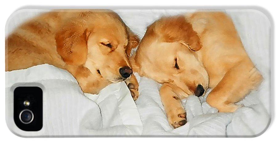 Golden Retriever IPhone 5 Case featuring the photograph Golden Retriever Dog Puppies Sleeping by Jennie Marie Schell