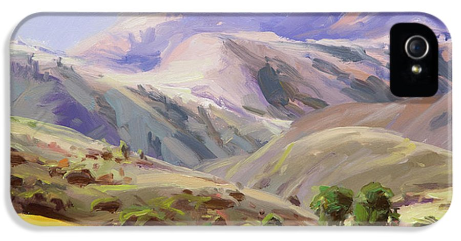 Mountains IPhone 5 Case featuring the painting Grazing In The Salmon River Mountains by Steve Henderson
