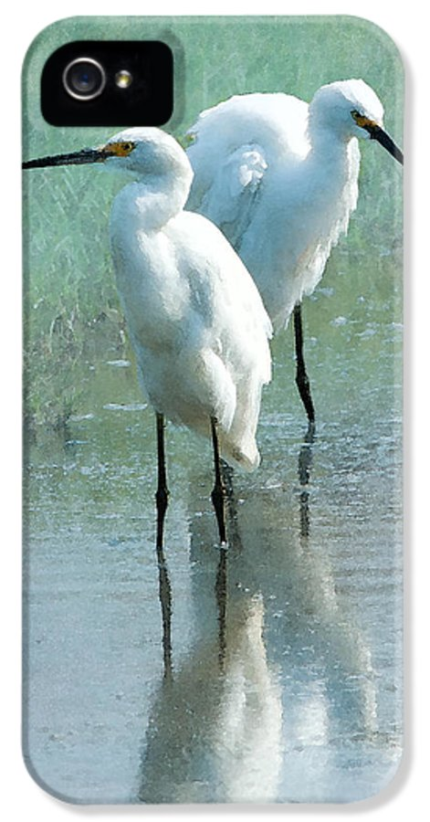 Great Egret IPhone 5 / 5s Case featuring the photograph Great Egrets by Betty LaRue