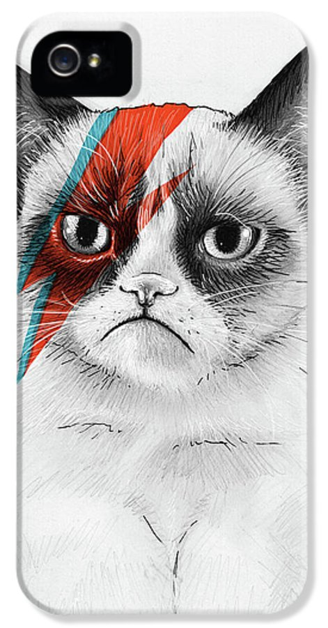 Grumpy Cat IPhone 5 Case featuring the drawing Grumpy Cat As David Bowie by Olga Shvartsur