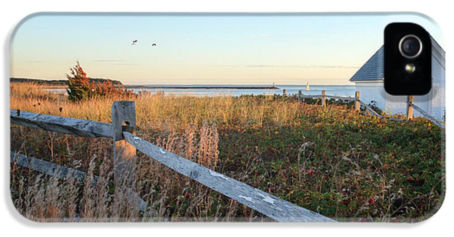 Cape Cod IPhone 5 Case featuring the photograph Harbor Shed by Bill Wakeley