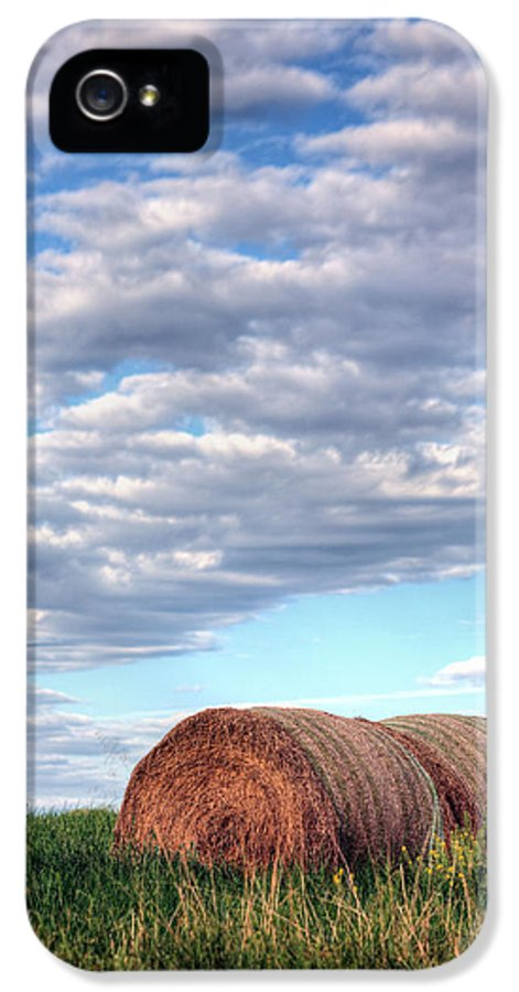 Hay IPhone 5 / 5s Case featuring the photograph Hay It's Art by JC Findley