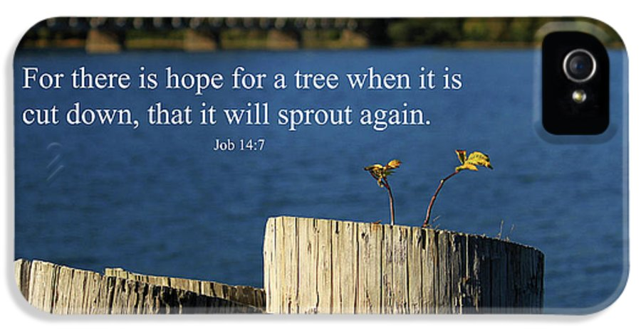 Inspirational IPhone 5 Case featuring the photograph Hope For A Tree by James Eddy
