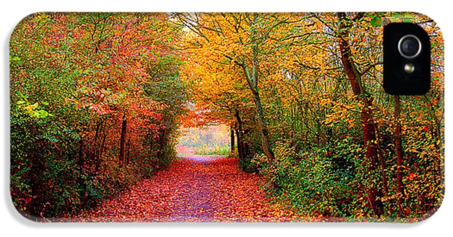 Autumn IPhone 5 Case featuring the photograph Hope by Jacky Gerritsen