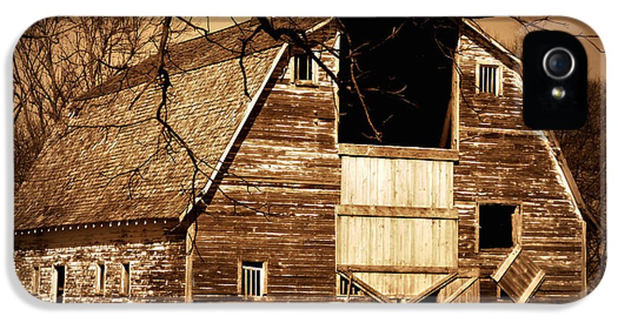 Barn IPhone 5 Case featuring the photograph In Need by Julie Hamilton