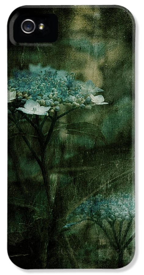 Teal Flowers IPhone 5 Case featuring the photograph In The Still Of The Night by Bonnie Bruno