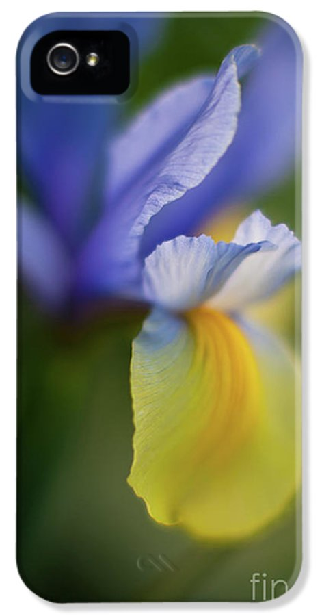 Iris IPhone 5 Case featuring the photograph Iris Grace by Mike Reid