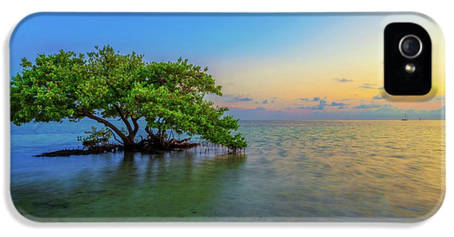 Mangrove IPhone 5 Case featuring the photograph Isolation by Chad Dutson