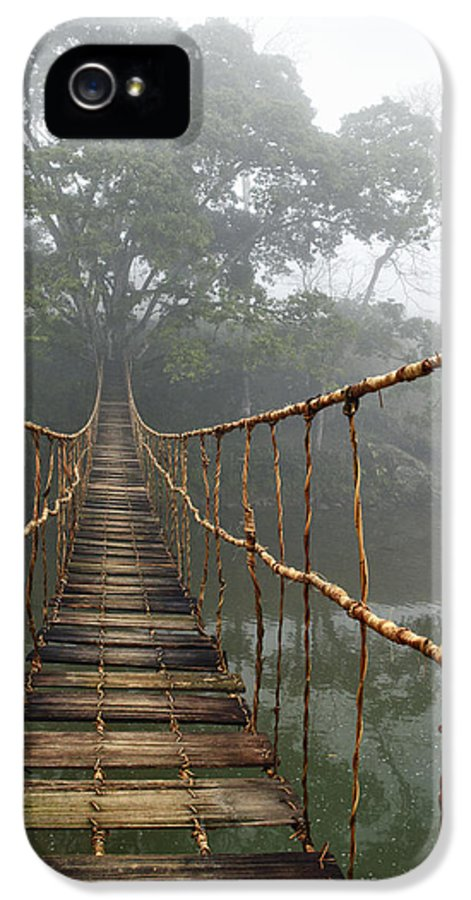 Absence IPhone 5 Case featuring the photograph Jungle Journey 2 by Skip Nall
