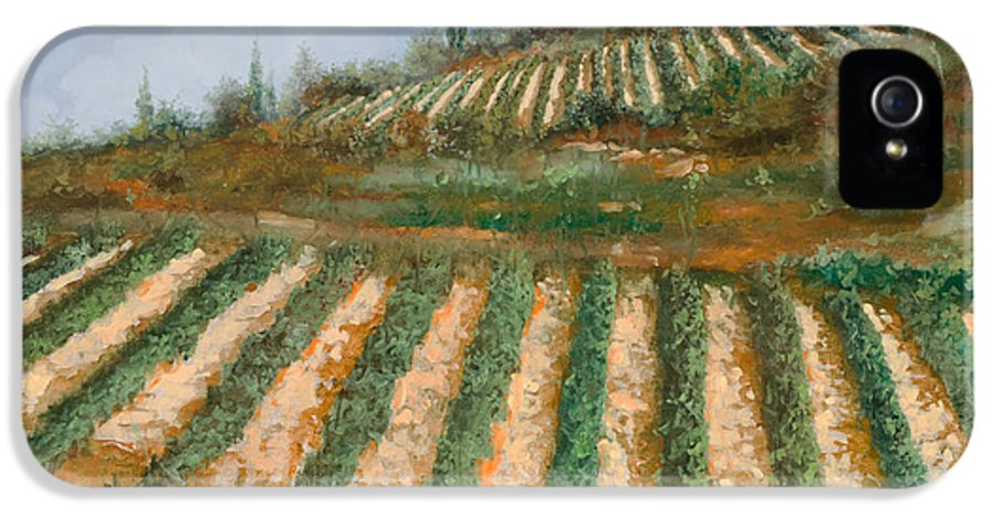 Vineyard IPhone 5 Case featuring the painting Le Case Nella Vigna by Guido Borelli