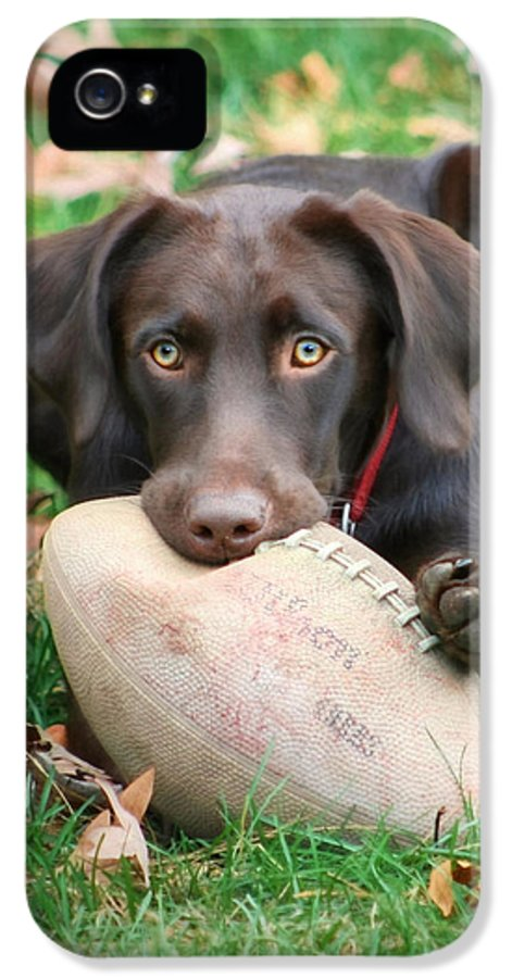 Sienna IPhone 5 Case featuring the photograph Let's Play Football by Lori Deiter