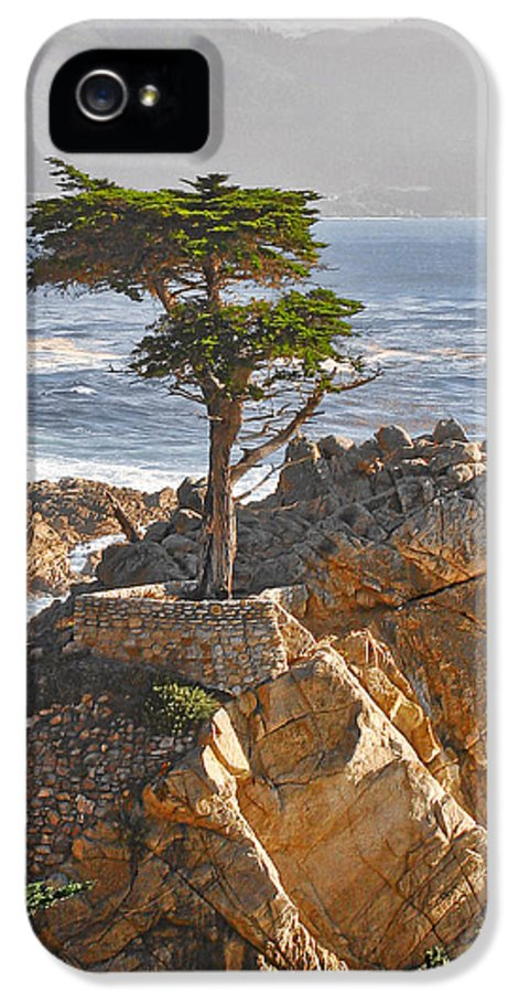 Pine IPhone 5 Case featuring the photograph Lone Cypress - The Icon Of Pebble Beach California by Christine Till