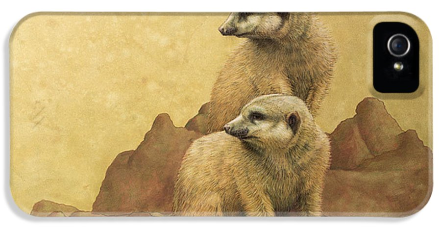 Meerkats IPhone 5 Case featuring the painting Lookouts by James W Johnson