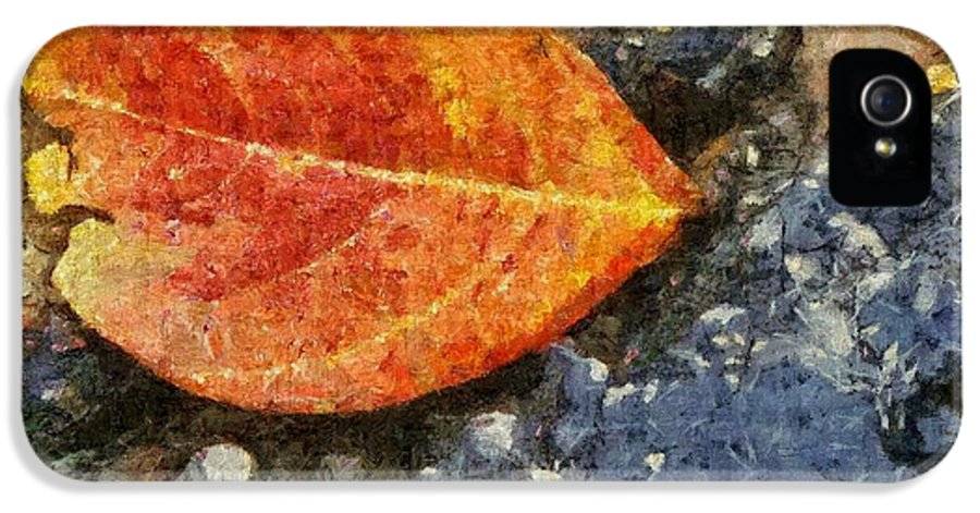 Asphalt IPhone 5 Case featuring the painting Loose Leaf by Jeff Kolker