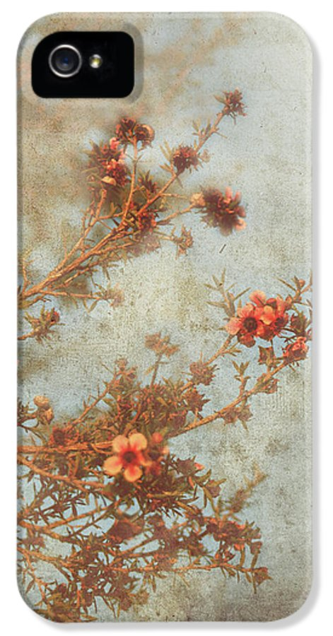 Flowers IPhone 5 Case featuring the photograph Love Is In Bloom by Laurie Search