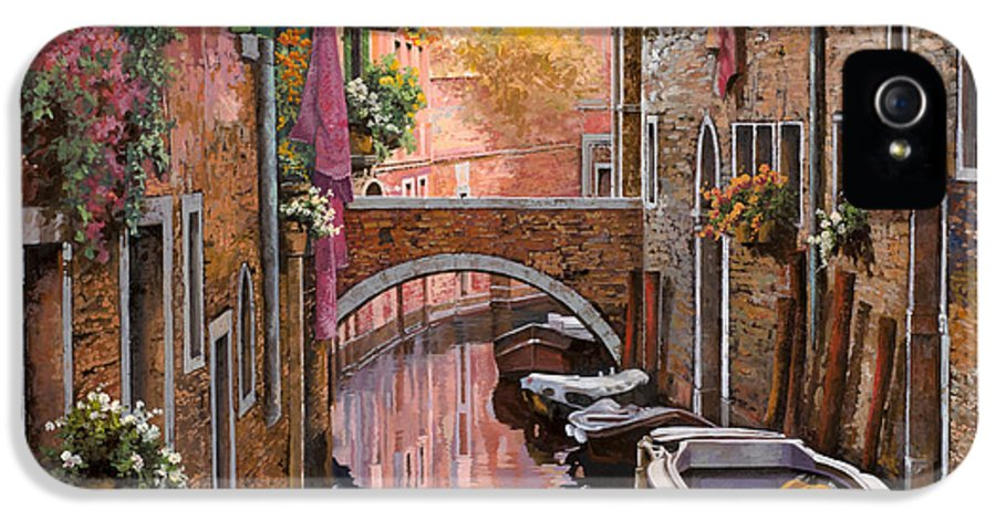 Venice IPhone 5 Case featuring the painting Mimosa Sui Canali by Guido Borelli