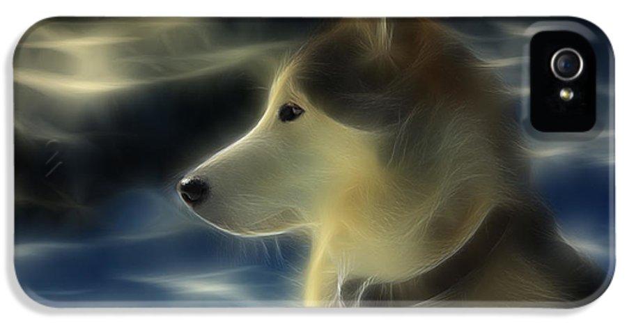 Dog IPhone 5 Case featuring the photograph Nanuk Husky Fractal by Marjorie Imbeau
