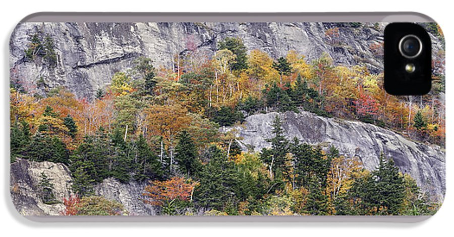 Fall IPhone 5 Case featuring the photograph New England Foliage Burst by Thomas Schoeller